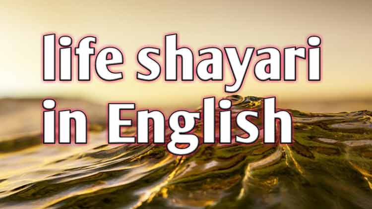 Photo of Best english life shayari