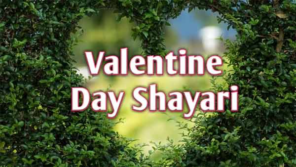 Photo of Valentine day shayari 2020।। Valentine Week 2020