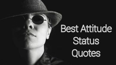 Photo of 50+ Best Attitude Status | Attitude Quotes In English